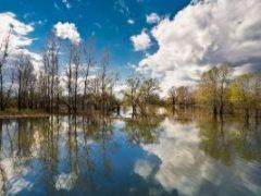 ПАМЯТКАжителям о порядке действий в условияхугрозы подтопления в паводковый период