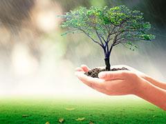 Самарский межотраслевой институт приглашает предпринимателей на 3-дневное обучение по экологической безопасности