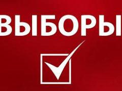 Дополнительные выборы депутата Собрания представителей