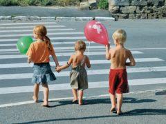О принятых мерах по результатам проверки исполнения законодательства о безопасности дорожного движения