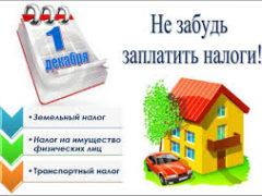 1 декабря - срок уплаты имущественных налогов!
